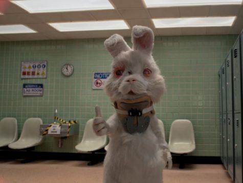 """Short animated film """"Save Ralph"""" highlighted the consequences of testing cosmetic products on animals."""