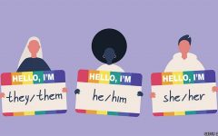 22% of CVHS students reported using non-traditional pronouns in a recent survey.